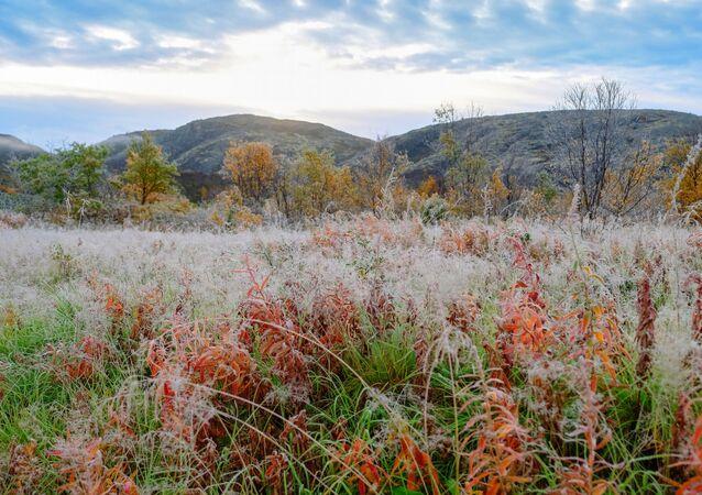 First frost near the Titovka river in Murmansk region.