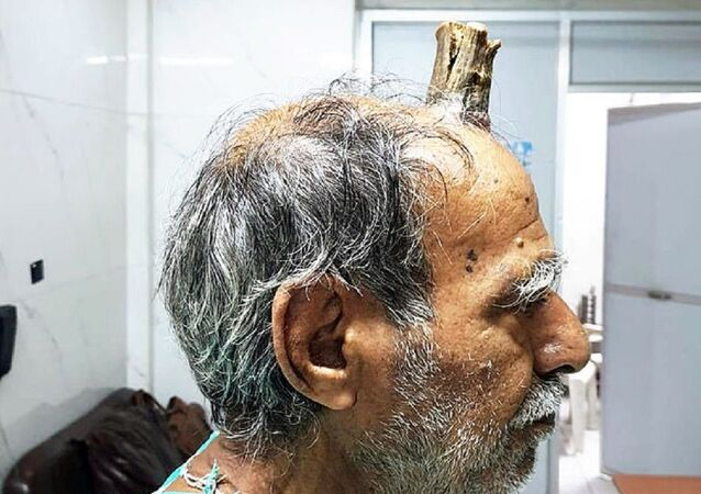 Shyam Lal Yadav Horn
