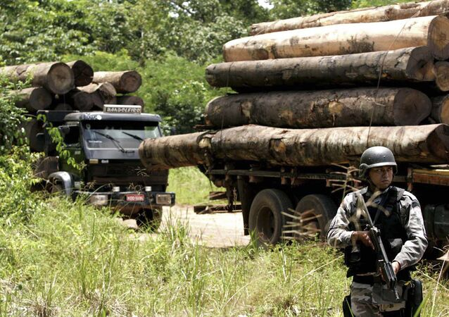 A soldier stands guard in front of a truck loaded with logs that were illegally cut from the Amazon rain forest in Tailandia,in the northern Brazilian state of Para, Monday, Feb. 25, 2008