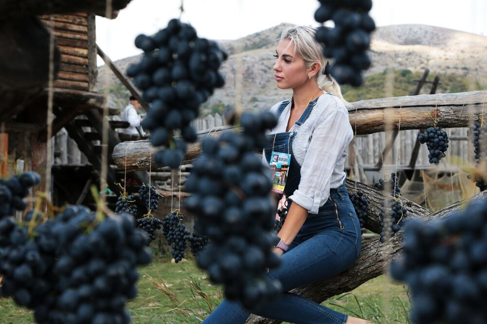 A girl poses for pictures in the vineyard during the Grape Festival in the Park of the Vikings outside Simferopol, Crimea.
