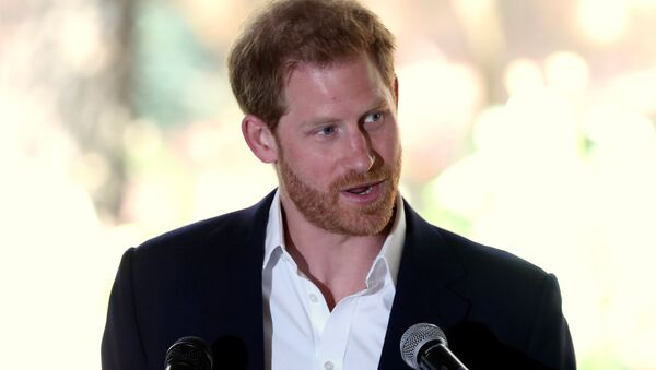 Britain's Prince Harry delivers a statement before meeting Graca Machel, the widow of the late Nelson Mandela, at the British High Commissioner's residence, Johannesburg, South Africa, October 2, 2019 - Sputnik International