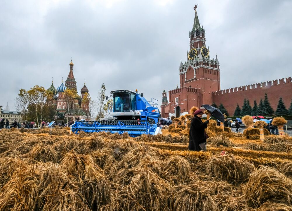 A woman walks past a grain harvester combine during a Golden Autumn festival at Red Square in downtown Moscow on October 6, 2019.