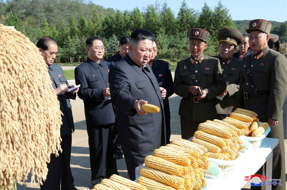 North Korean leader Kim Jong Un visits Farm No. 1116 of KPA Unit 810 on October 8, 2019.