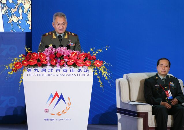 Russian Defense Minister Sergey Shoygu speaks at the plenary session of the Xianshan Forum