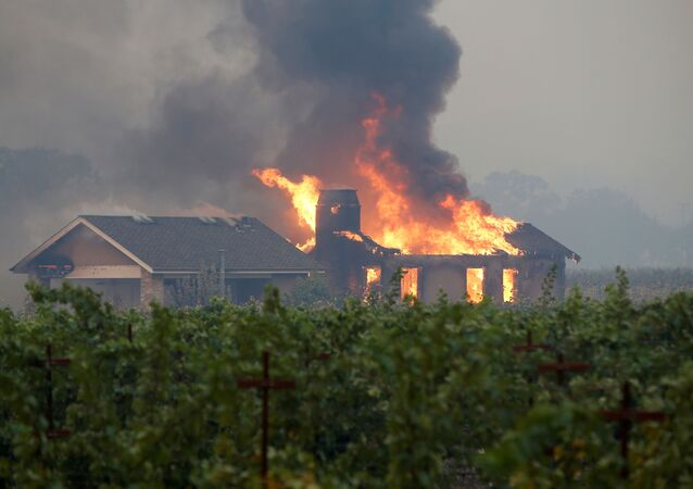 A burning structure is seen in the middle of a vineyard during the Kincade fire in Geyserville, California, U.S. October 24, 2019.