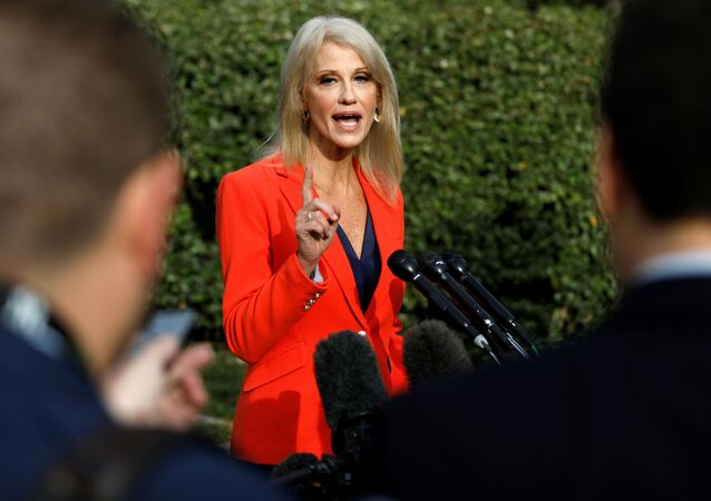 White House Senior Advisor Kellyanne Conway speaks to reporters at the White House in Washington, U.S., October 25, 2019
