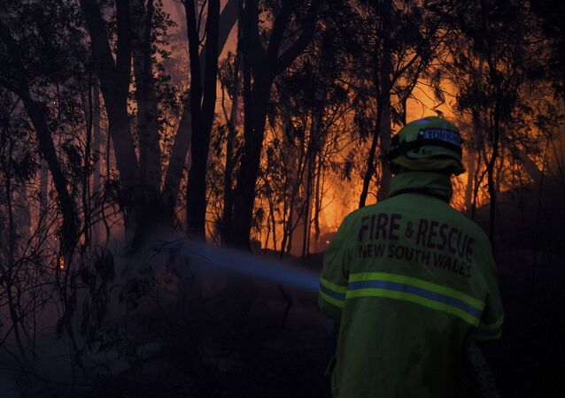 Fire and Rescue NSW firefighters conduct property protection as a bushfire burns close to homes on Railway Parade in Woodford NSW