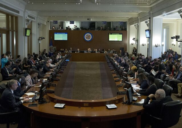 Permanent Council of the Organization of American States (OAS) representatives