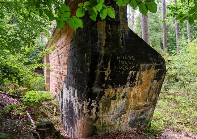 Remain of Route 46, an abandoned motorway from the Nazi era, in a forest near Wuerzburg, Germany
