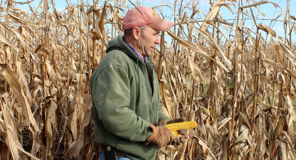 Corn and soybean farmer Don Swanson prepares to harvest his corn crop as he and other Iowa farmers struggle with the effects of weather and ongoing tariffs resulting from the trade war between the United States and China that continue to effect agricultural business in Eldon, Iowa U.S. October 4, 2019.