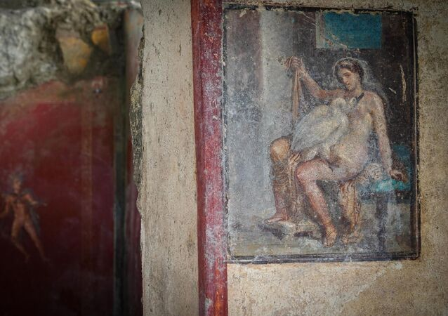 The Domus di Leda and the Cigno are open to the public this morning, a fresco depicting the homonymous Greek myth that came to light last summer during the excavations at the Regio V