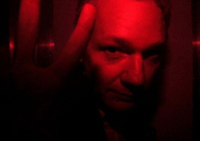 Julian Assange V