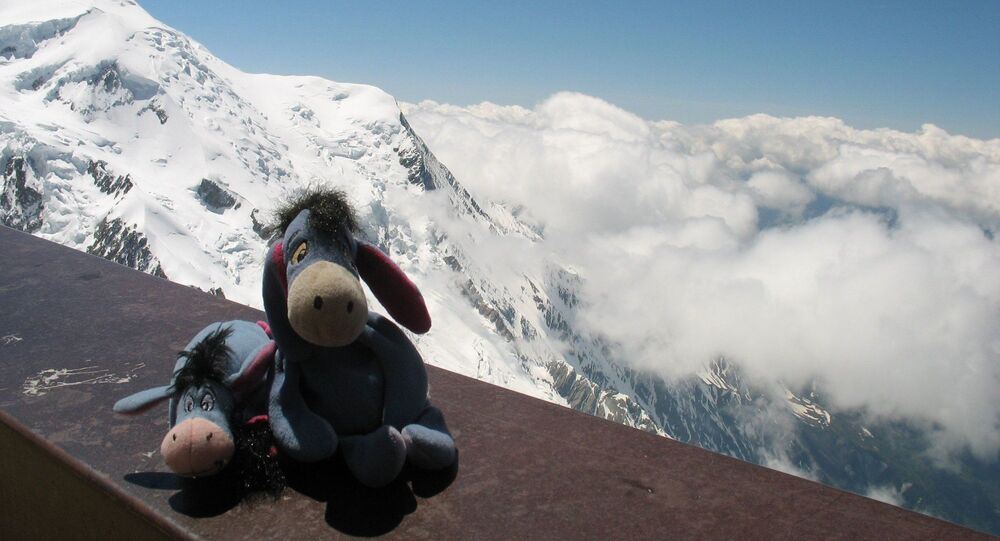 Eeyore & EJ Above the Clouds in the Alps. Chamonix, France