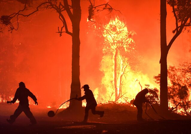 Rural Fire Service (RFS) volunteers and NSW Fire and Rescue officers fight a bushfire encroaching on properties near Termeil, Australia, December, 3, 2019.