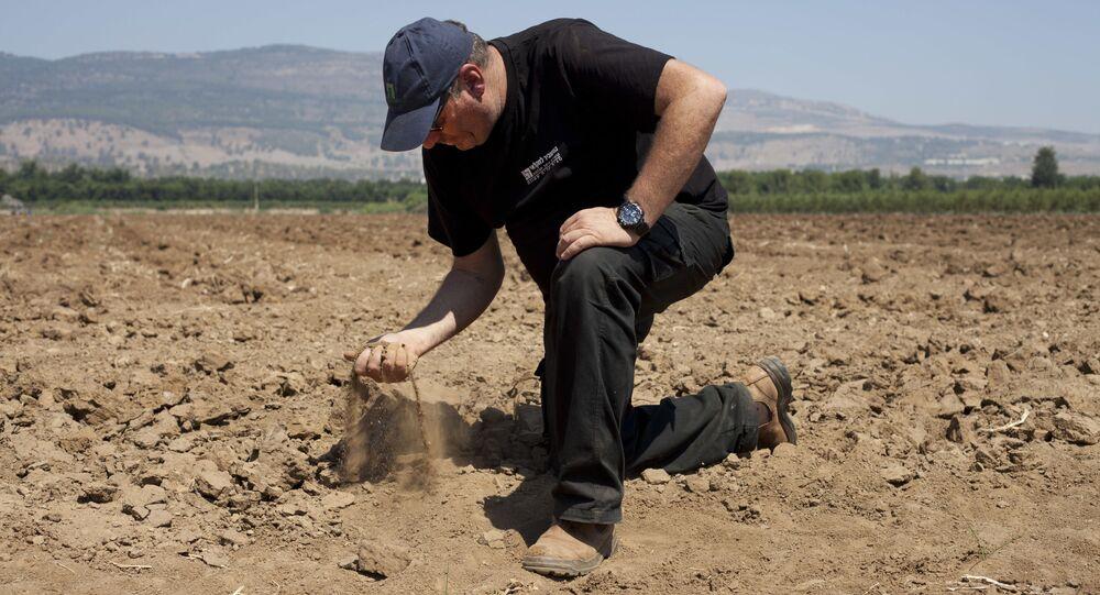 In this Wednesday, 17 July  2018, photo, Israeli farmer Ofer Moskovitz checks soil in his field near Kfar Yuval, Israel
