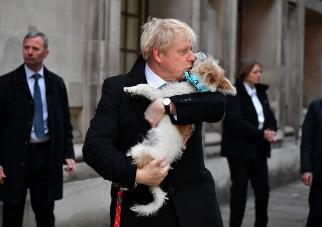 Boris Johnson with Dilyn at the polls on Election Day