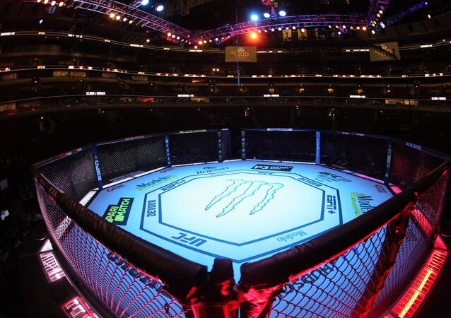 General view of the UFC 238 octagon