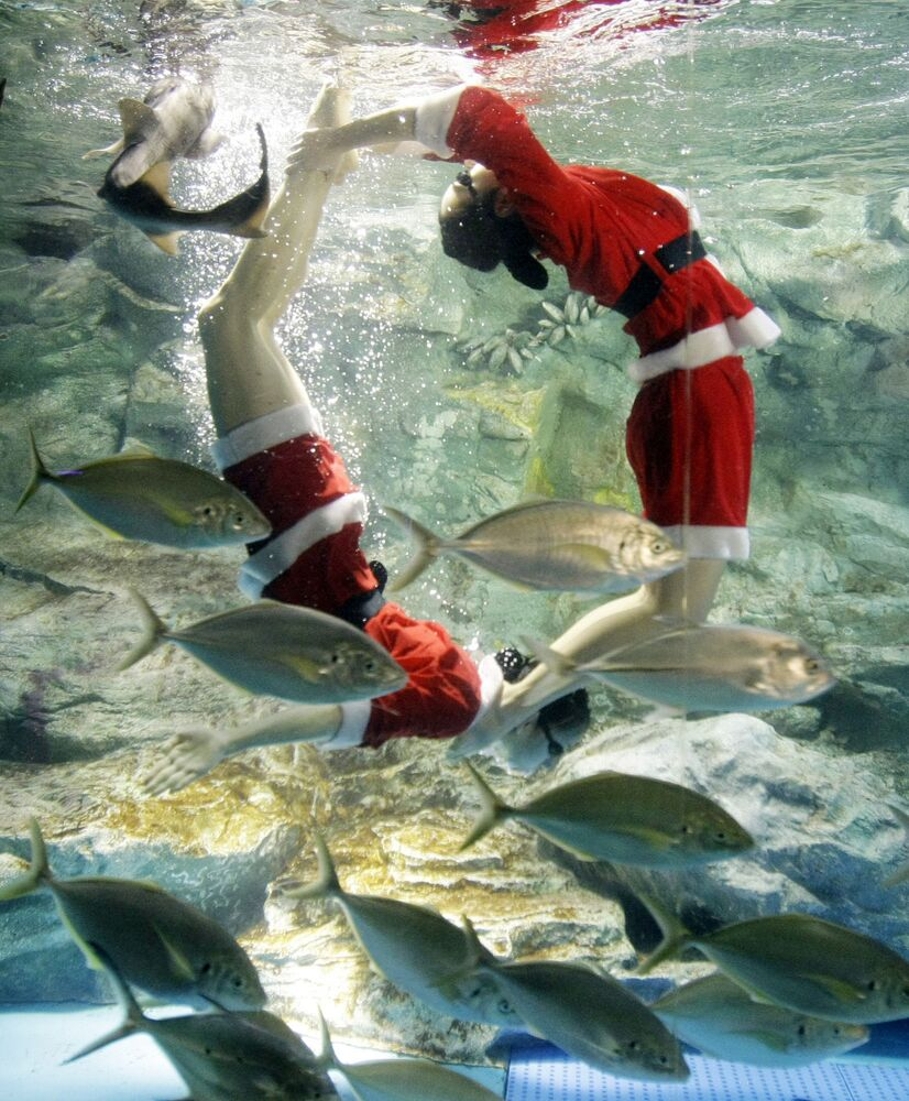 Dressed in Santa Claus outfits, divers swim through a huge fish tank at the celebration ahead of Christmas with variety of fishes at 63 Seaworld Aquarium in Seoul, Tuesday, 23 December 2008. Christmas is one of the biggest holidays celebrated in South Korea.