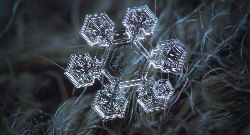 Macro photography of natural snowflake. Medium size crystal, around 4 mm in diameter. 8 serial shots averaged to boost signal-to-noise ratio. Background: dark woolen fabric, natural light (cloudy sky), external optics Helios 44M-5, december 2014, Moscow.