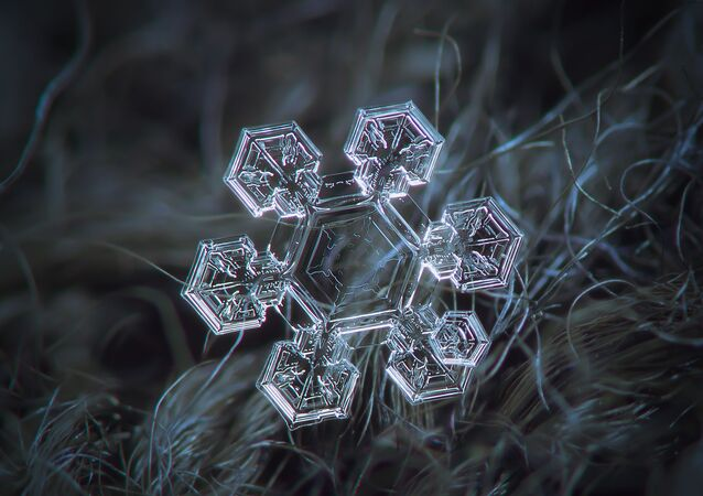 Astonishing Ice: Close-Up Photos Show the Amazing Beauty of Snowflakes