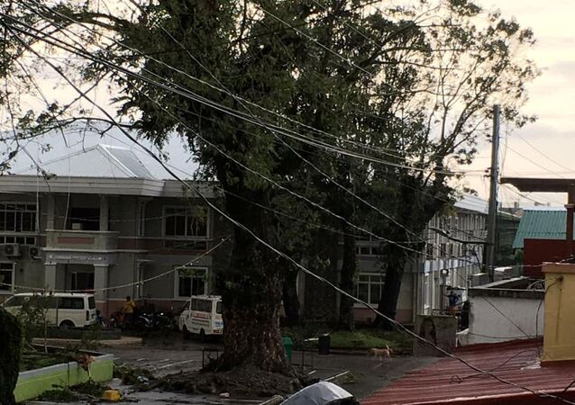 Fallen power lines after Typhoon Phanfone swept through Tanauan, Leyte, in the Philippines