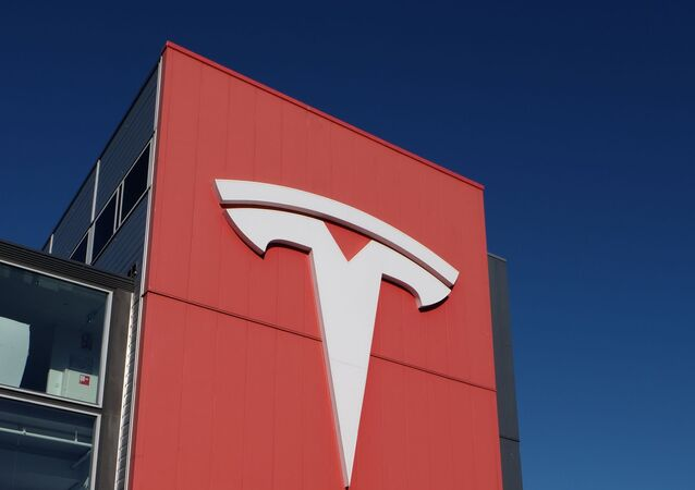 Large Tesla logo