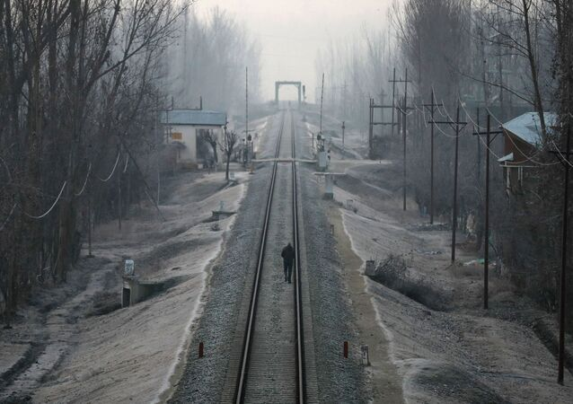A man walks on a frost-covered railway track on a cold winter morning on the outskirts of Srinagar, December 27, 2019