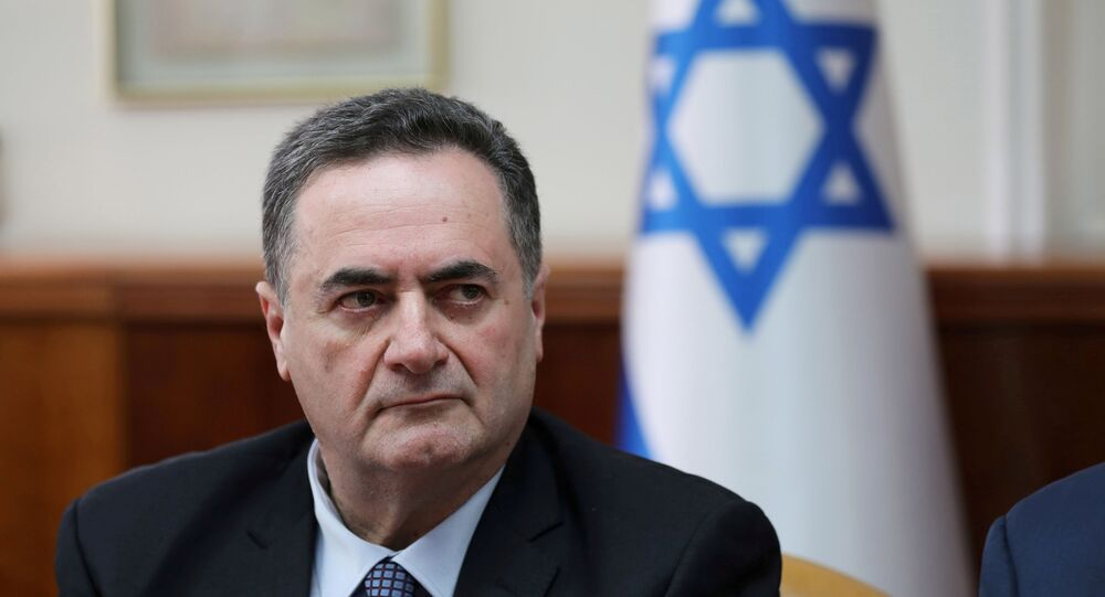Israel's acting foreign minister Israel Katz, who also serves as intelligence and transport minister,  attends the weekly cabinet meeting in Jerusalem February 24, 2019.