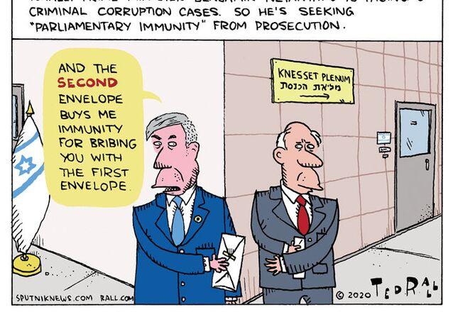 Bibi Seeks Immunity