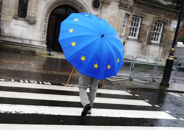 A person holds up a European flag umbrella on a rainy day in London, Britain, December 20, 2019.