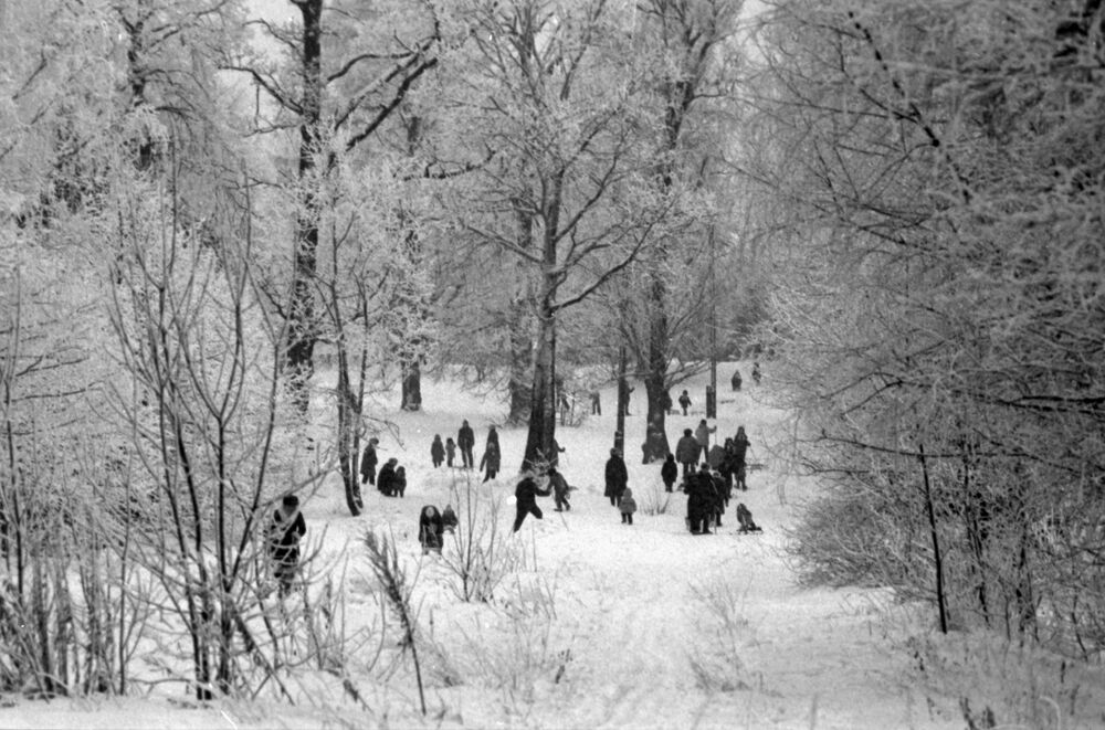 Residents of the Moscow district Yasenevo during a winter walk through the park. The planned urban community dates back to the late 1970s.