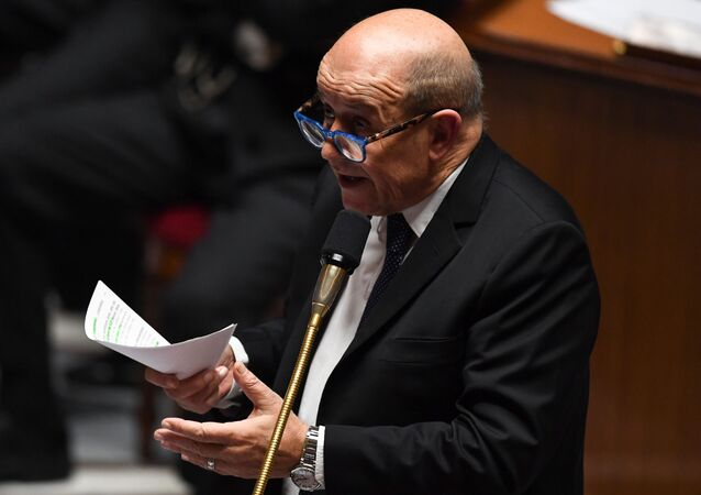 French Foreign Affairs Minister Jean-Yves Le Drian at the National Assembly (Assemblee Nationale) in Paris