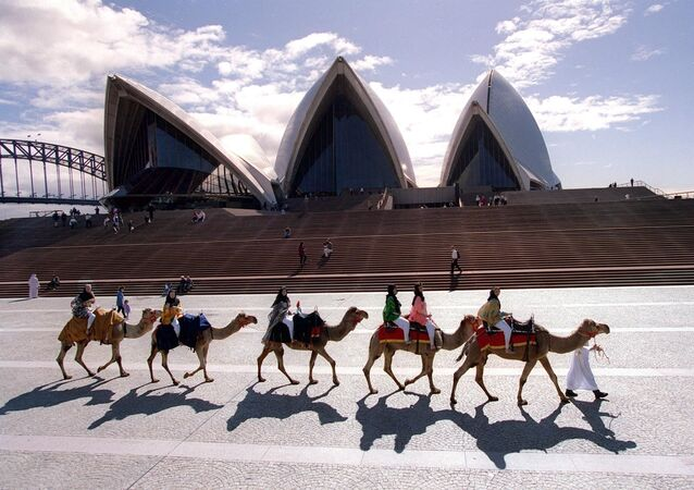 Camels and their jockeys parade in front of the Sydney Opera House 20 August promoting what will be the first major camel race meet to be held in Australia.