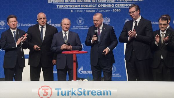 Russian President Vladimir Putin Speaking at the launching ceremony of TurkStream pipeline - Sputnik International