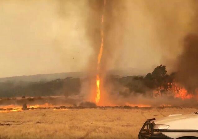 Fiery Twisters Ravage Australia's Kangaroo Island