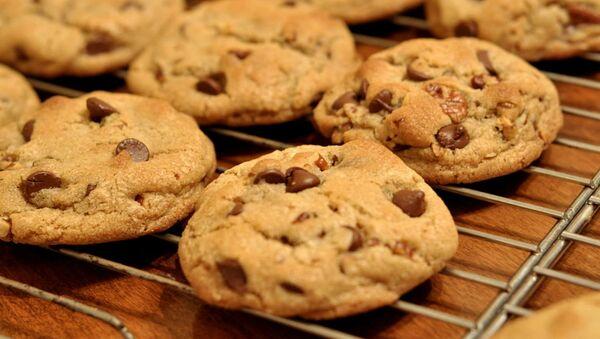 Chocolate chip cookies on a bake tray. - Sputnik International