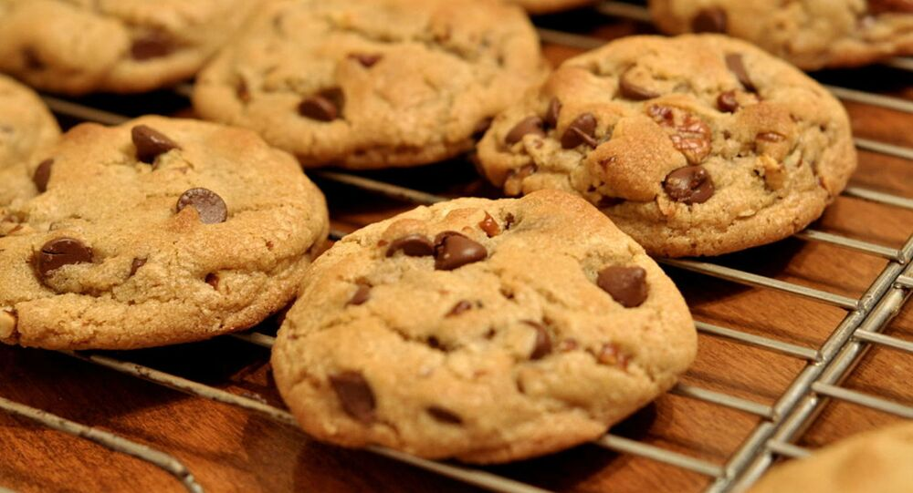 Chocolate chip cookies on a bake tray.
