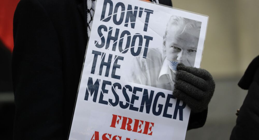 A demonstrator supporting Julian Assange holds a banner outside Westminster Magistrates Court in London, Thursday, Jan. 23, 2020