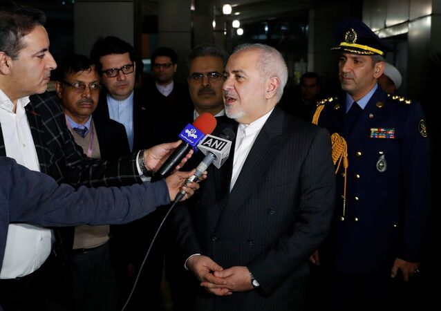 Iranian Foreign Minister Javad Zarif speaks to reporters upon his arrival at the airport in New Delhi, India, January 14, 2020.
