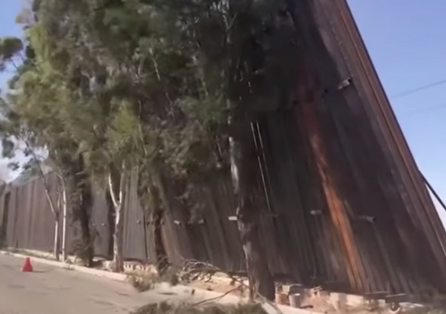 'Several' panels of a newly installed portion of the US' border wall along its southern border with Mexico were blown over after strong Southern California winds swept through the area.
