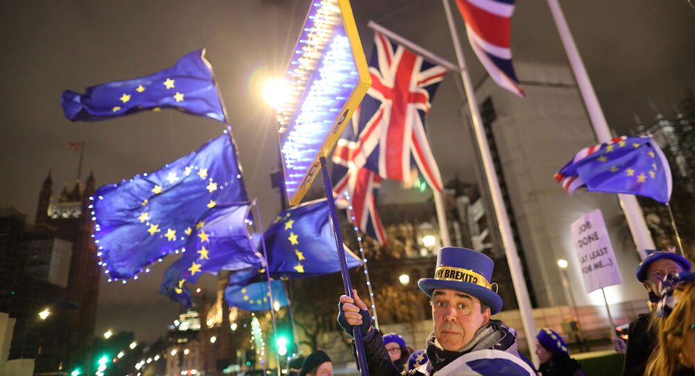 Anti-Brexit protesters holding a banner and flags demonstrate outside the Houses of Parliament in London