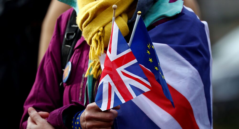 An anti-Brexit demonstrator holds British and European flags during a protest in front of the European Parliament in Brussels, Belgium January 30, 2020.