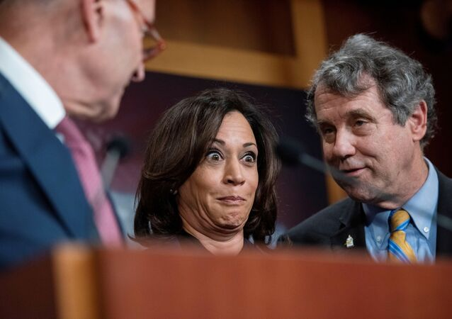 Senate Minority Leader Chuck Schumer (D-NY), Senator Kamala Harris (D-CA), and Senator Sherrod Brown (D-OH), take part in a news conference with democrats at the U.S. Capitol before the start of U.S. President Donald Trump's Senate impeachment trial in Washington, U.S., January 31, 2020