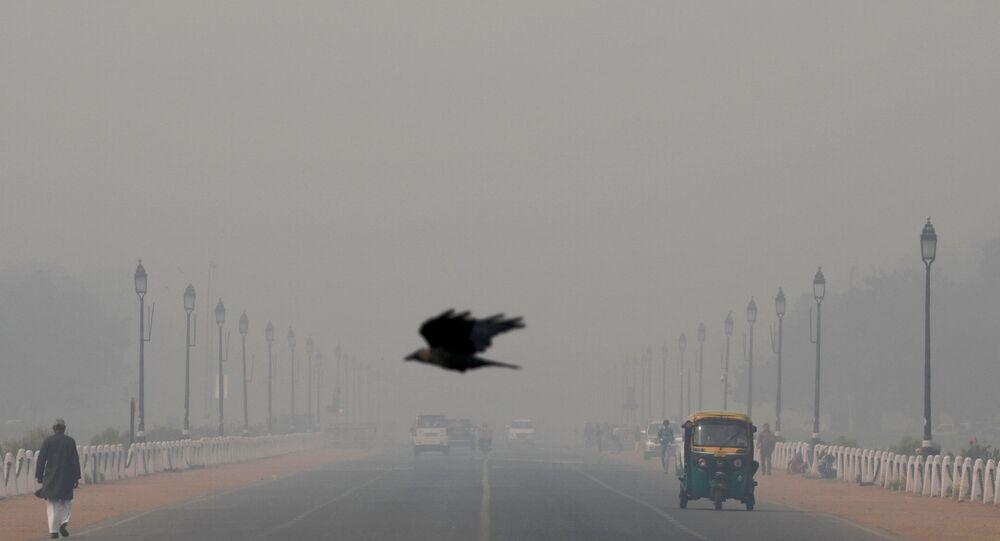 FILE PHOTO: A bird flies amidst smog near India's Presidential Palace in New Delhi, India, November 13, 2019.
