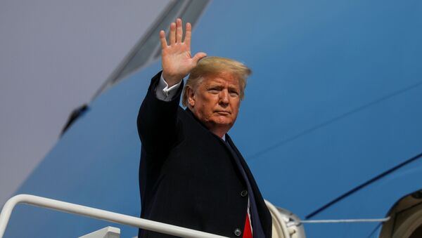 U.S. President Donald Trump boards Air Force One as he departs Washington for travel to Michigan at Joint Base Andrews, Maryland, U.S. January 30, 2020. - Sputnik International