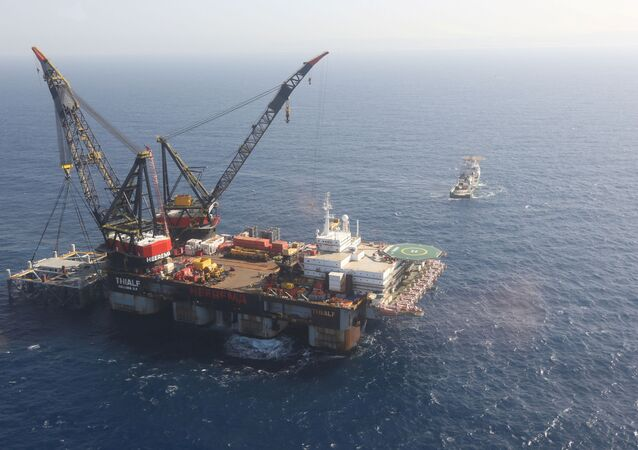 FILE PHOTO: An aerial view shows the newly arrived foundation platform of Leviathan natural gas field, in the Mediterranean Sea, off the coast of Haifa, Israel January 31, 2019.