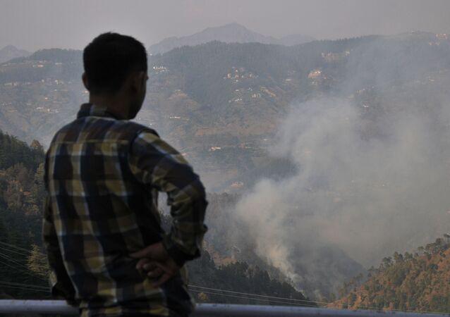 An Indian resident looks over jungle where a wildfire broke out near the northern hill town of Shimla in the Indian state of Himachal Pradesh on May 2, 2016
