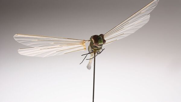 Developed by CIA's Office of Research and Development in the 1970s, this micro Unmanned Aerial Vehicle (UAV) was the first flight of an insect-sized aerial vehicle (Insectothopter). It was an initiative to explore the concept of intelligence collection by miniaturized platforms - Sputnik International