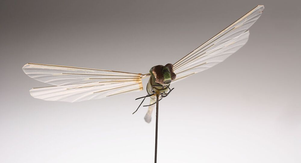 Developed by CIA's Office of Research and Development in the 1970s, this micro Unmanned Aerial Vehicle (UAV) was the first flight of an insect-sized aerial vehicle (Insectothopter). It was an initiative to explore the concept of intelligence collection by miniaturized platforms