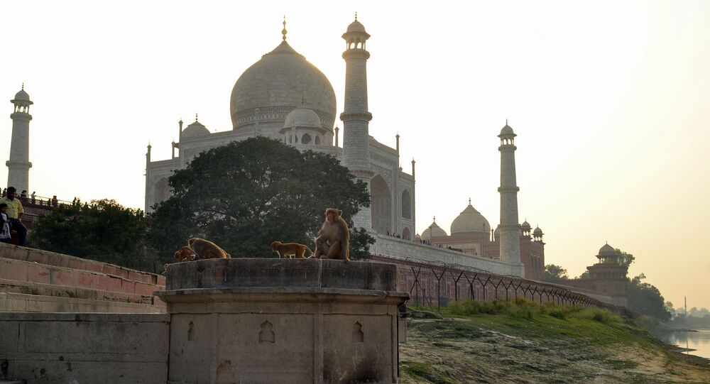 Taj Mahal but no trade deal for Trump in India